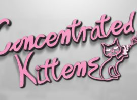 concentrated kittens