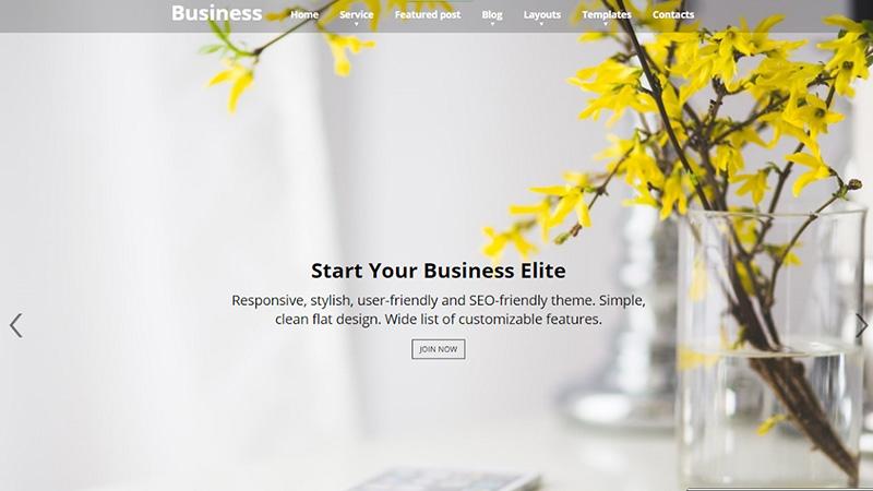 Business Elite WP Theme