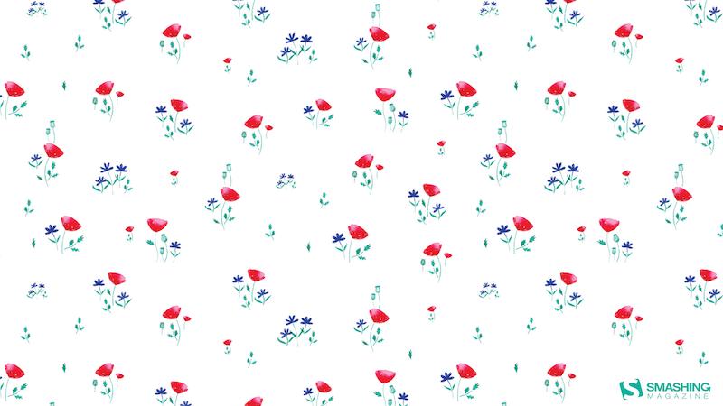Poppies Paradise
