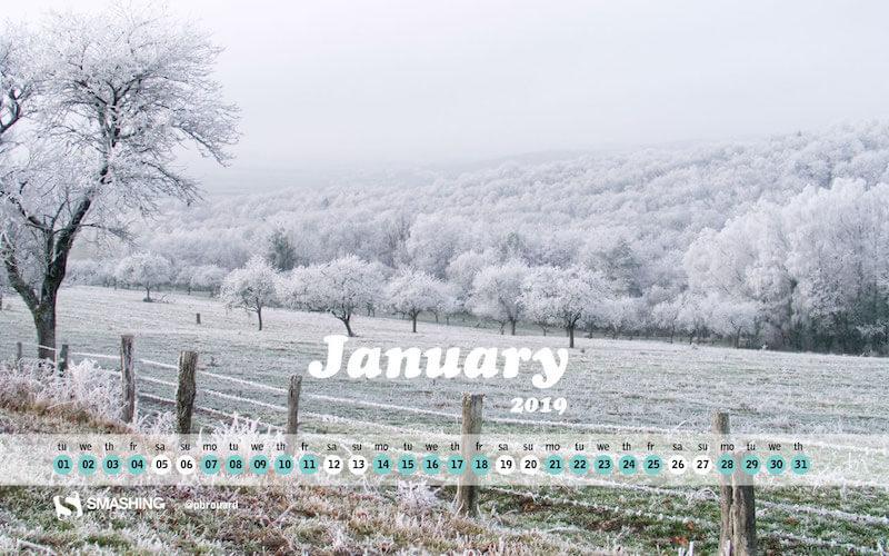 Freezy hope for 2019