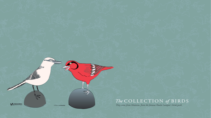 The Collection of Birds