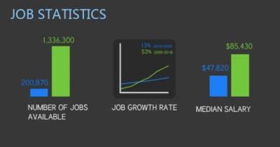 Visual.ly infographic: web designer vs. web developer job statistics