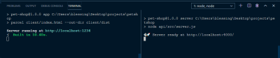 VScode CLI partitioned to start both the client and the server.